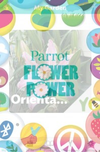 Parrot Opening screen